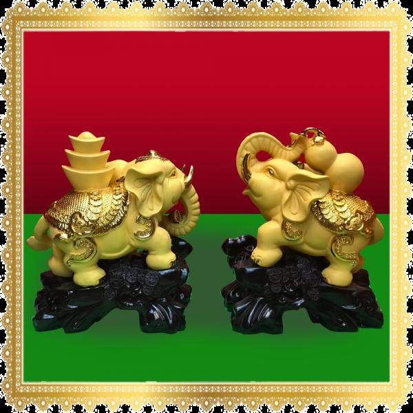 ช้างคู่ ทอง 2