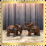 ช้างคู่ ซ้าย ขวา