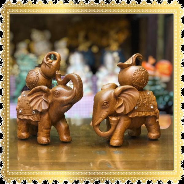 ช้างคู่แบบน้ำเต้าและแอปเปิ้ล